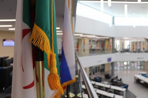 The Algerian flag, among close to 50 other flags, hangs over the library. ¨The flags actually represent all the countries of origin for our students and staff.¨ Rock Hill principal Daniel Toth said. The flags are meant to represent aspects of Rock Hill