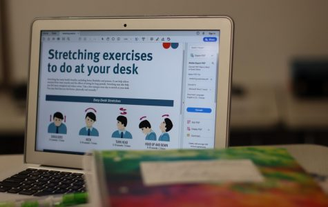 A computer depicts desk stretching exercises from  HealthyLearn.com. Columnist and sophomore Shreya Srivathsan covers the importance of stretching breaks during the work day.