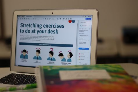 "A computer depicts desk stretching exercises from  HealthyLearn.com. Columnist and sophomore Shreya Srivathsan covers the importance of stretching breaks during the work day. ""During the school day, breaks should be integrated into both an online and in-person learning setting,"" she said. ""If we don"