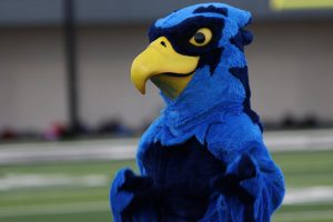 Rocky the Blue Hawk interacts with the crowd at Meet the Blue Hawks. The mascot will make it's school-wide debut at the Blue-Out pep rally Thursday.