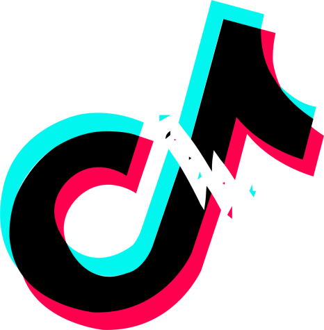 "The TikTok app logo sits broken in half. Tik Tok is an app with a huge following in the U.S. ""I know it"
