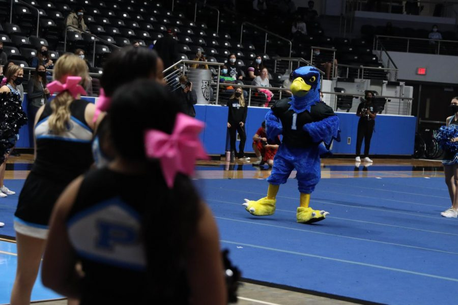 Rocky the Blue Hawk dances at the black-out pep rally. Freshmen and seniors attended this rally. Although it was the last rally of the football season, the school is planning to do more pep rallies in the spring.